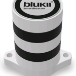 blukii-150x189